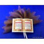 Plastic boekje met gebed